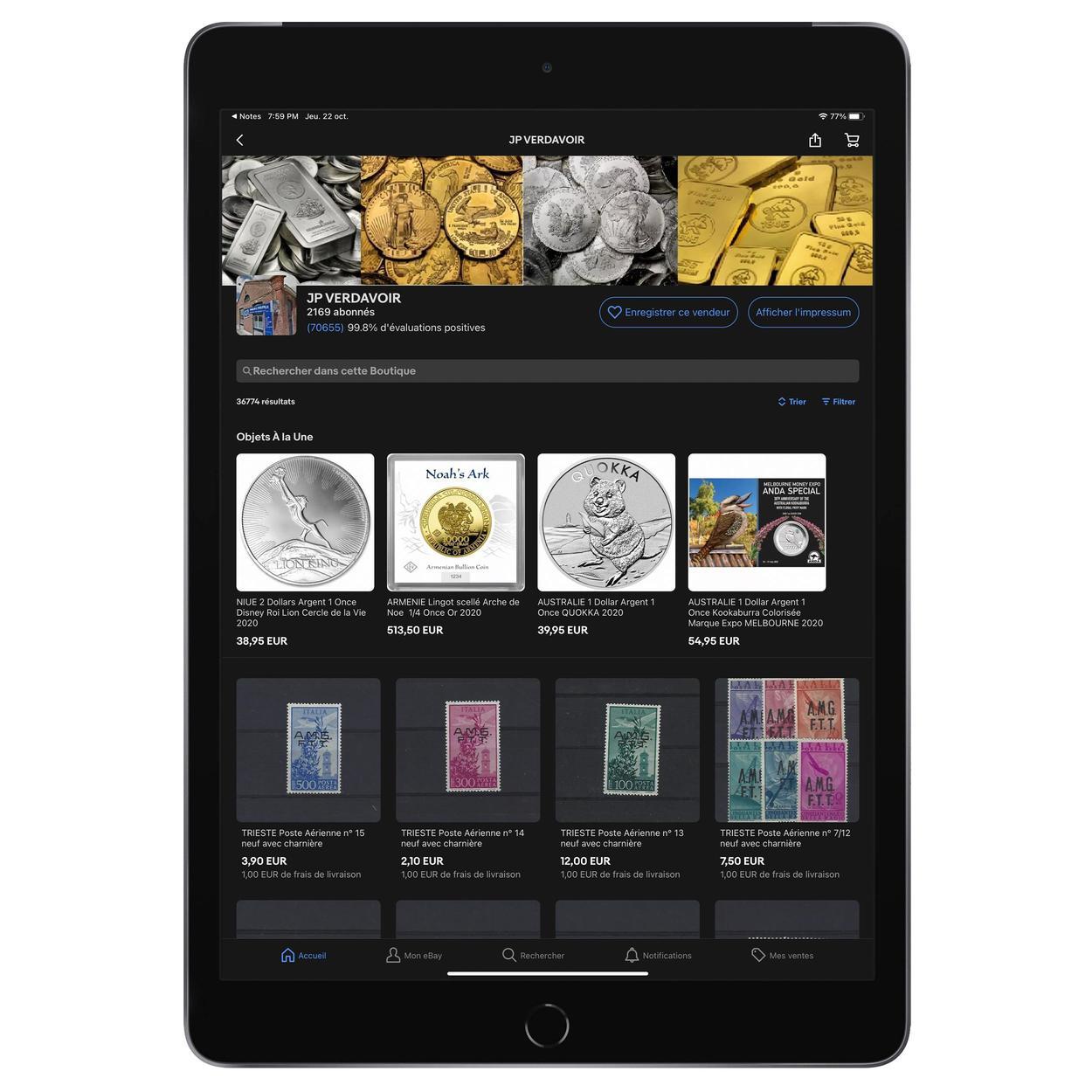 aperçu d'une boutique sur iPad